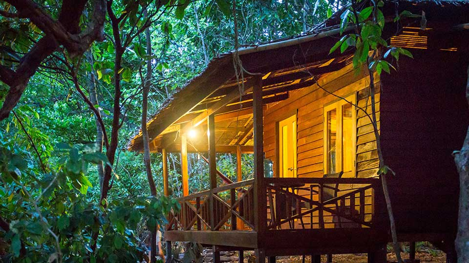 A Journey into the forest (2 Days/ 1 Night) | Royal Active Travels